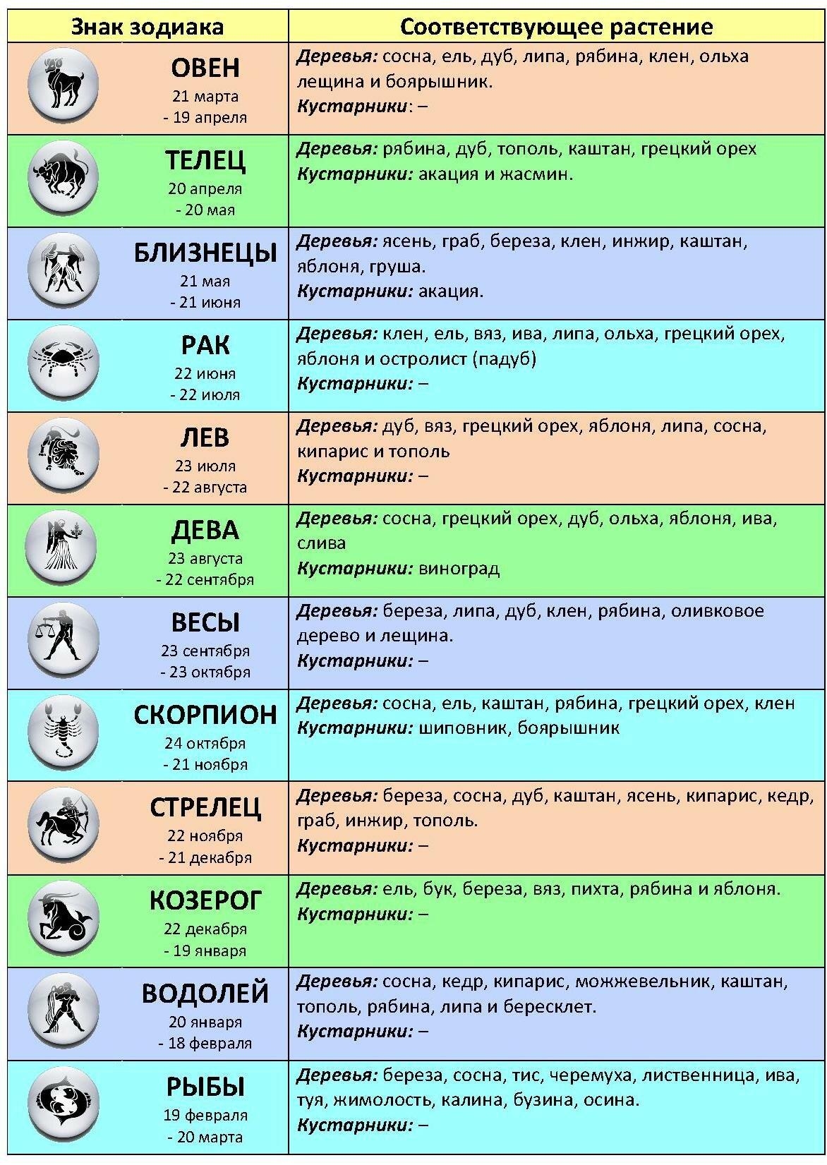 День рождения знак зодиака по гороскопу