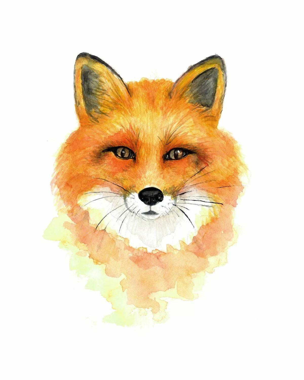 картинка голова лисички обои рабочий стол