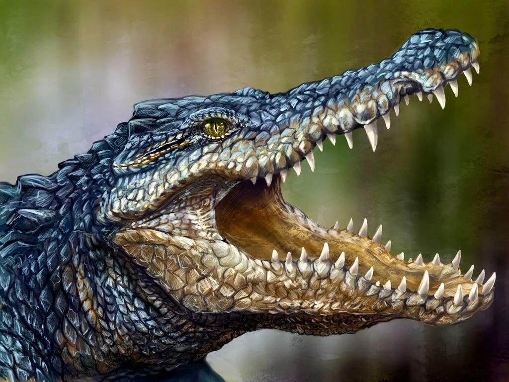 Картинка для аватарки стим крокодил