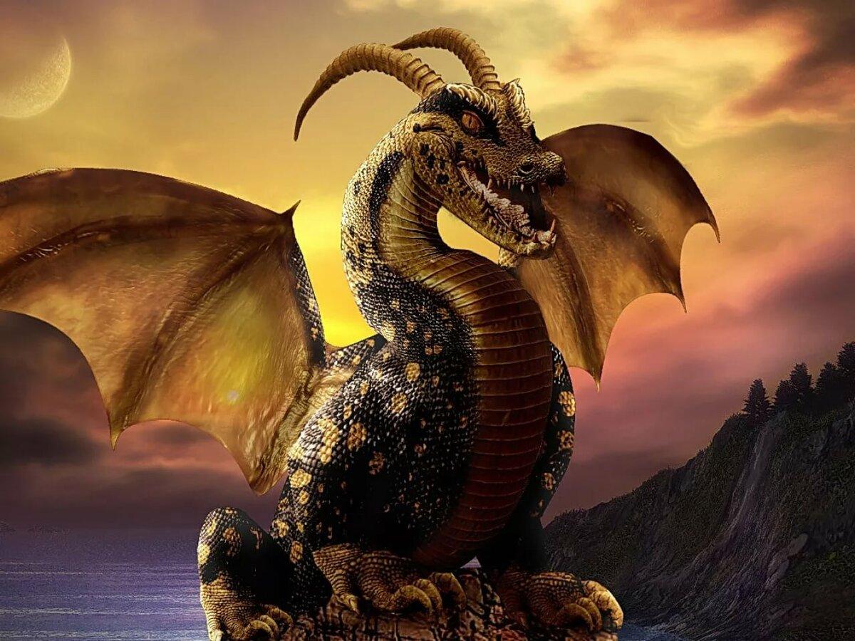 все про драконов с картинками еще