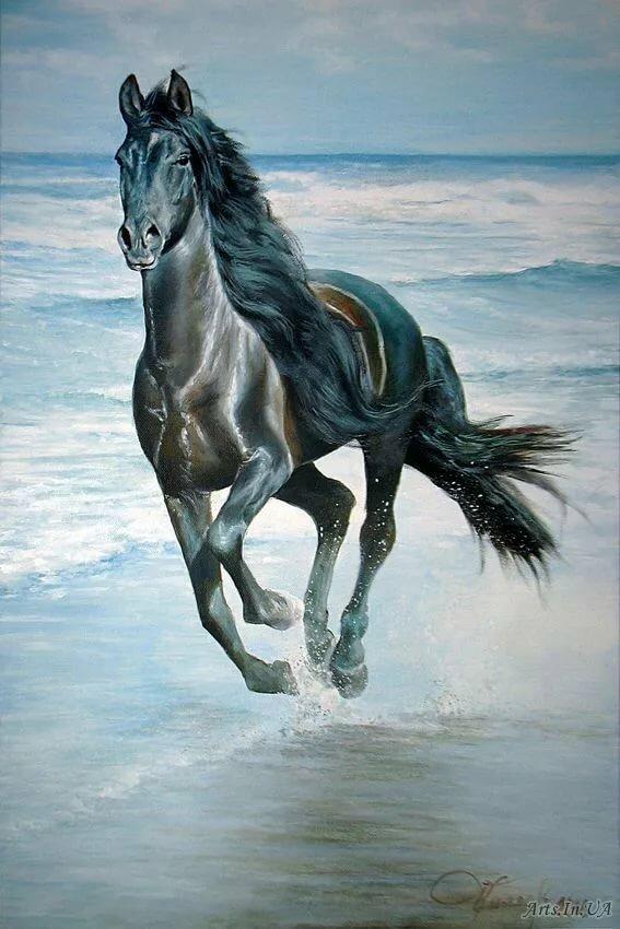 лошадь бегущая по волнам картинка некоторым