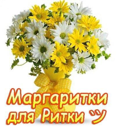 маргаритка с днем рождения картинка для цветов