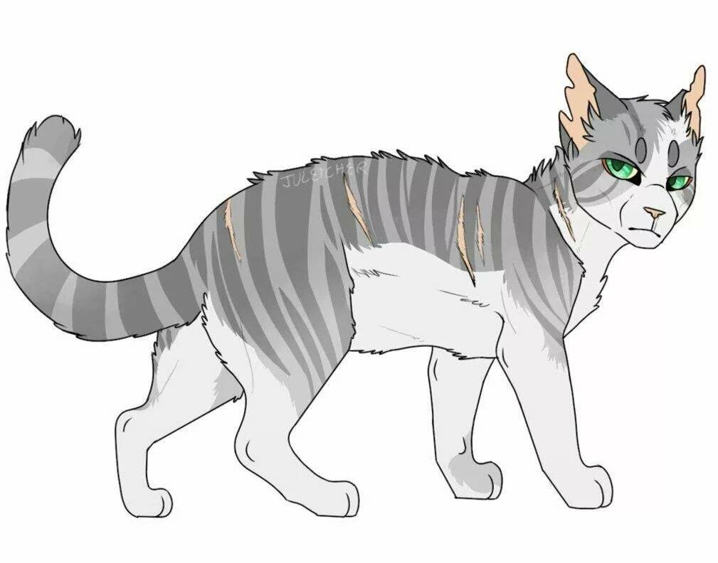 Картинки с искрой коты воители
