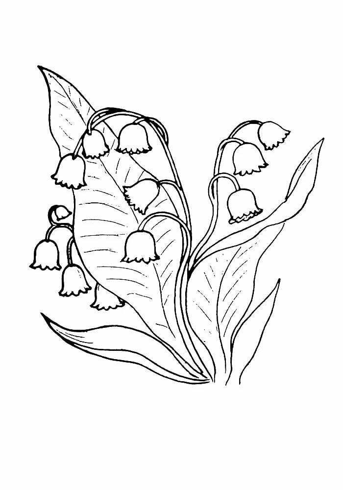 Рисунок ландыши для детей