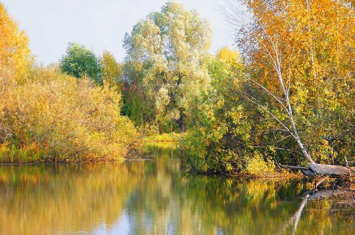 только фото природа новосибирской области вот диски