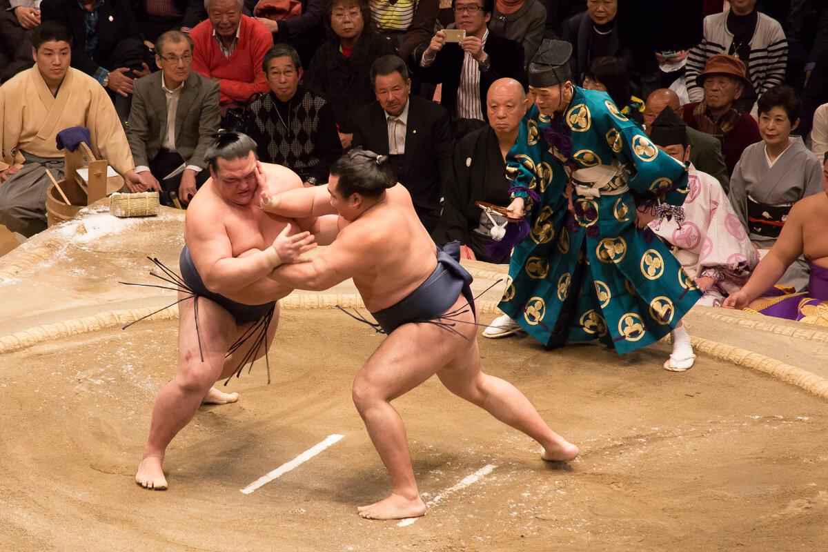 сможете картинки сумо каратэ обратитесь наш центр