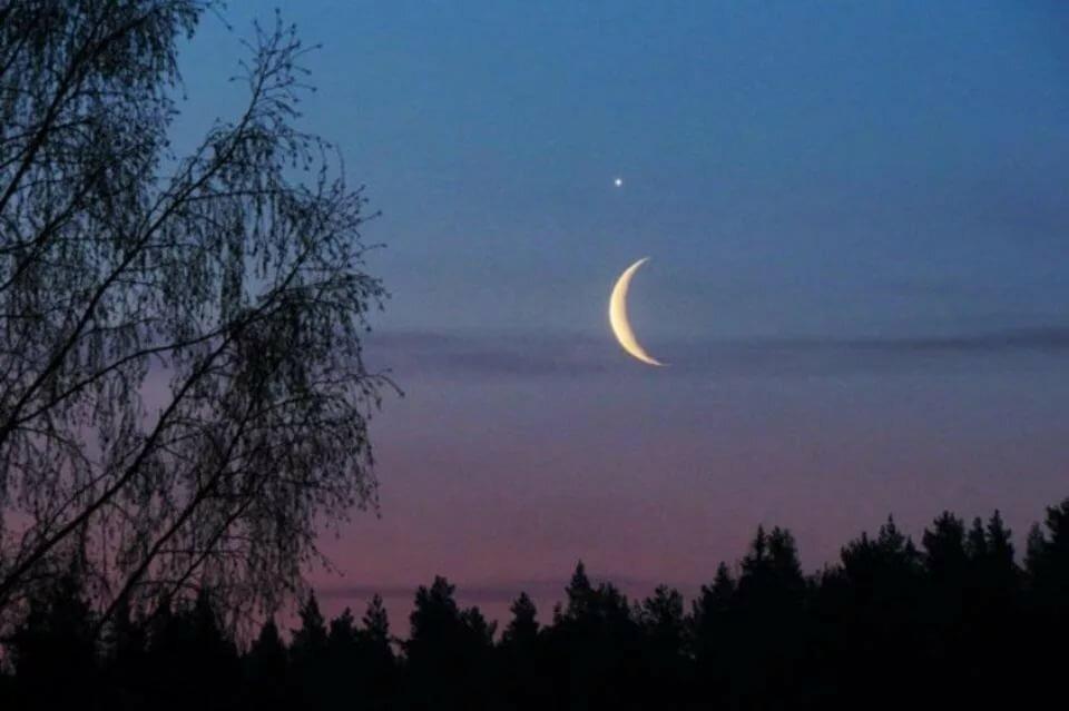 Фото глаз лунатика фотографии
