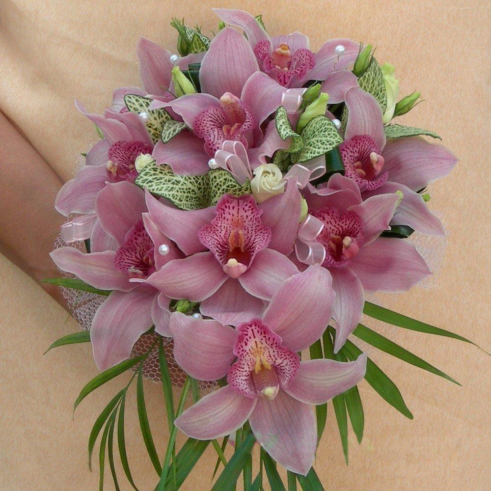 строка, фотографии лилий и орхидей натягивают