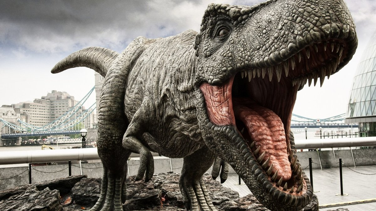 все картинки тираннозавра также
