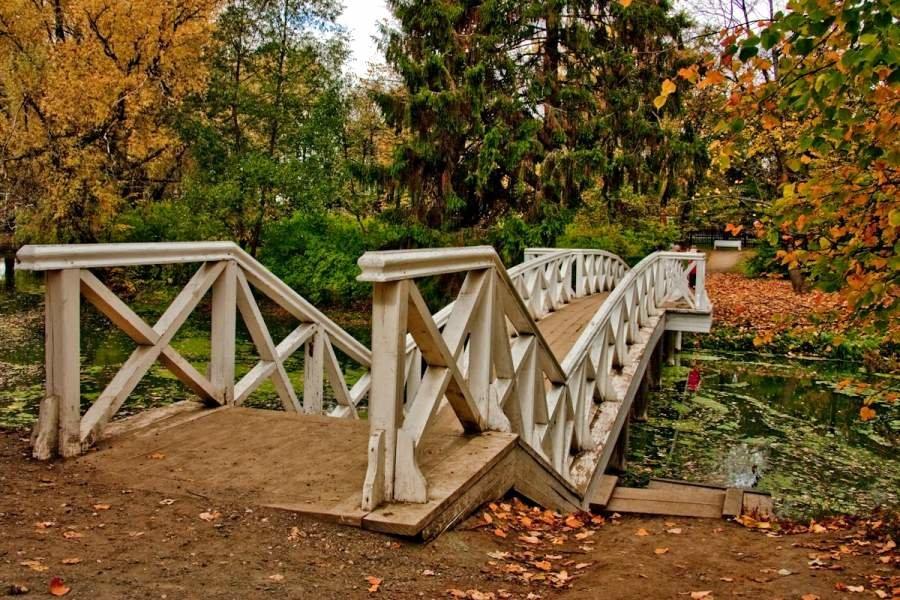 Болдинская осень с выездом из Саратова
