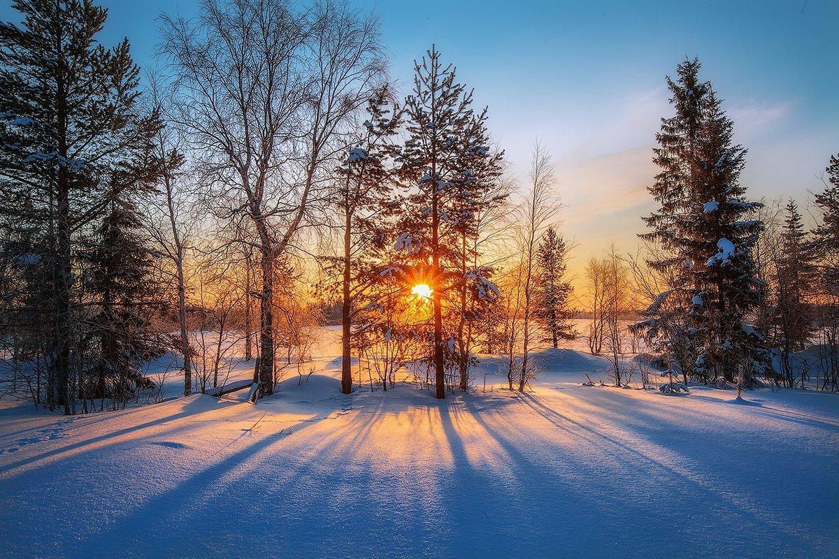 Для открыток, зимнего утра картинки
