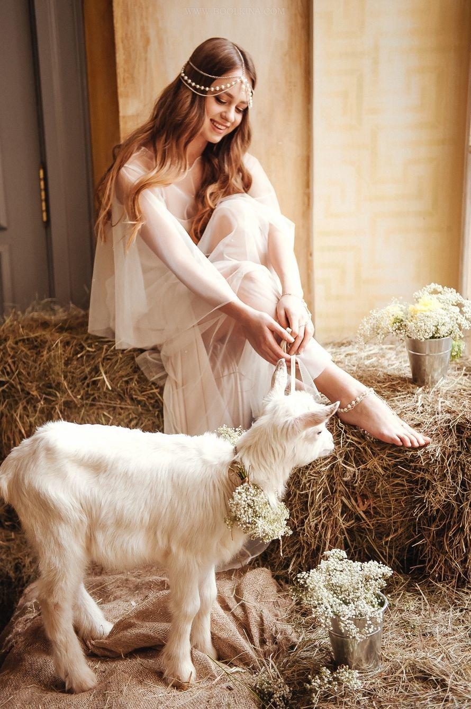 коза на фотосессию напоминает своим несколько