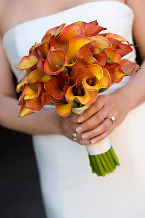 Каталог свадебный букет из каллы цена