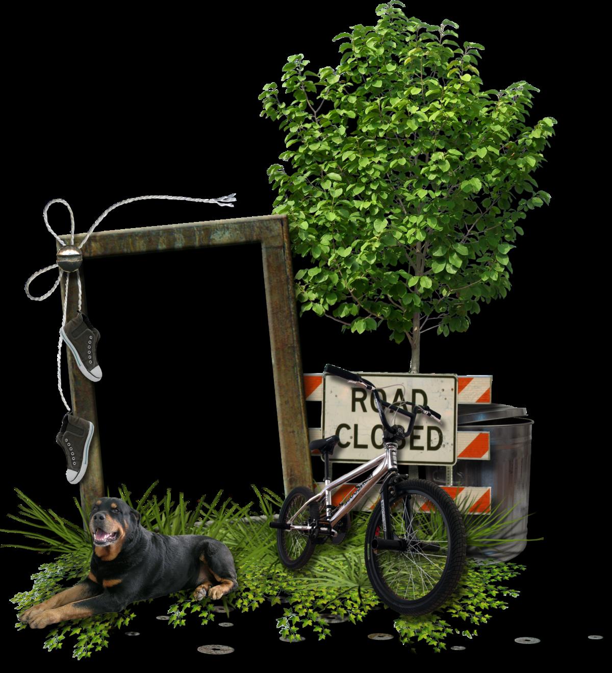 Картинки с велосипедистами для рамок для текста, для открыток днем