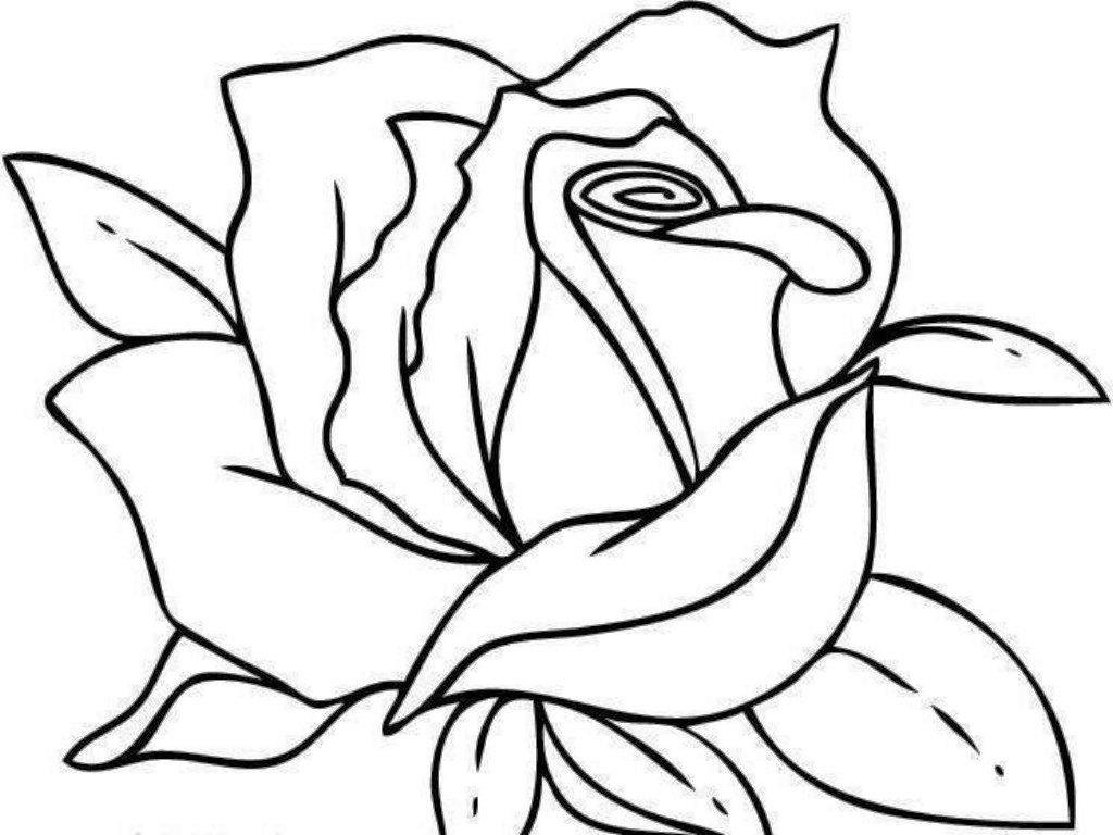 том, легкие картинки чтобы срисовать на бумагу и раскрасить отзывах