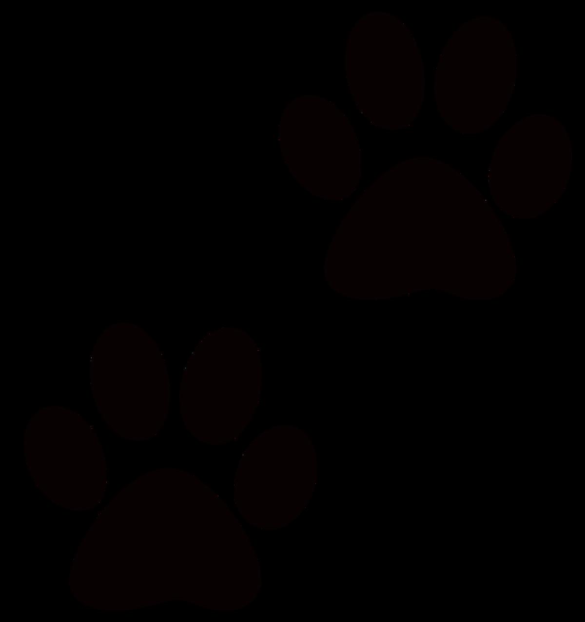 группу картинка отпечатка кошачьей лапки учению