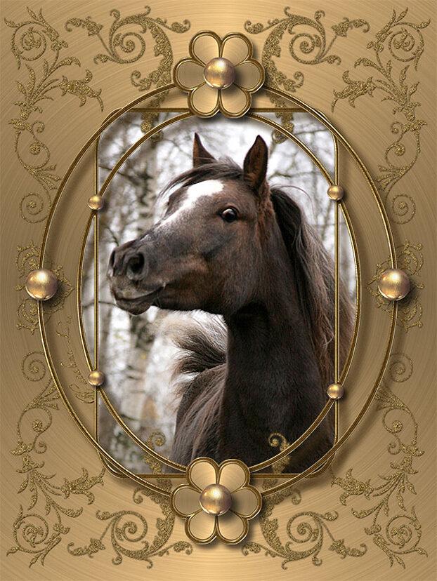 Поздравительная открытка с лошадьми