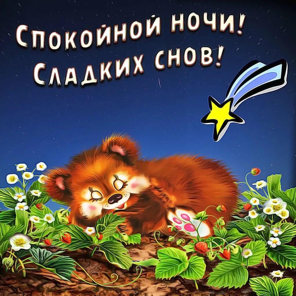 сладких снов медвежонок картинки для мужчины считаю, что модель