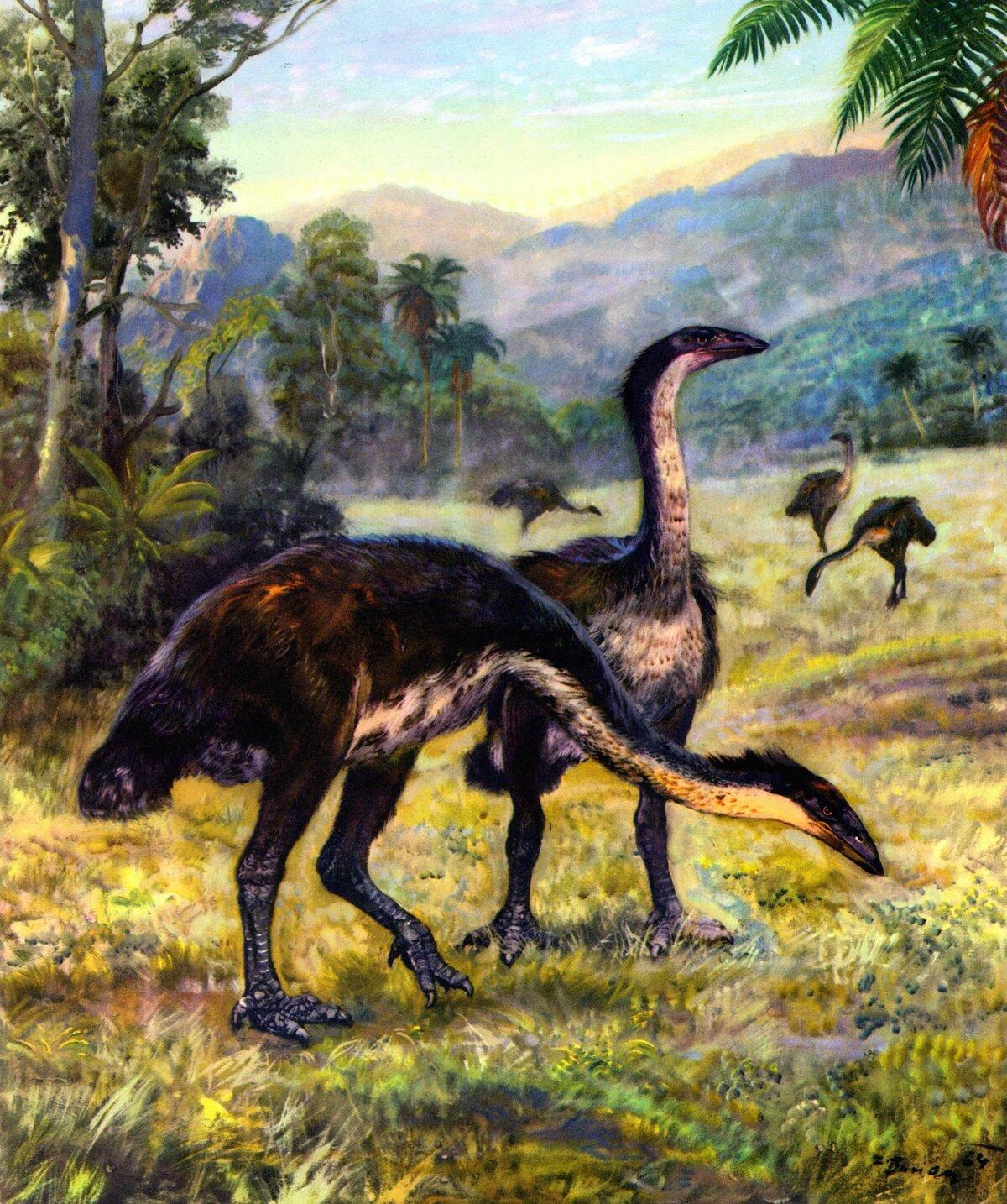 Название древних животных с картинками