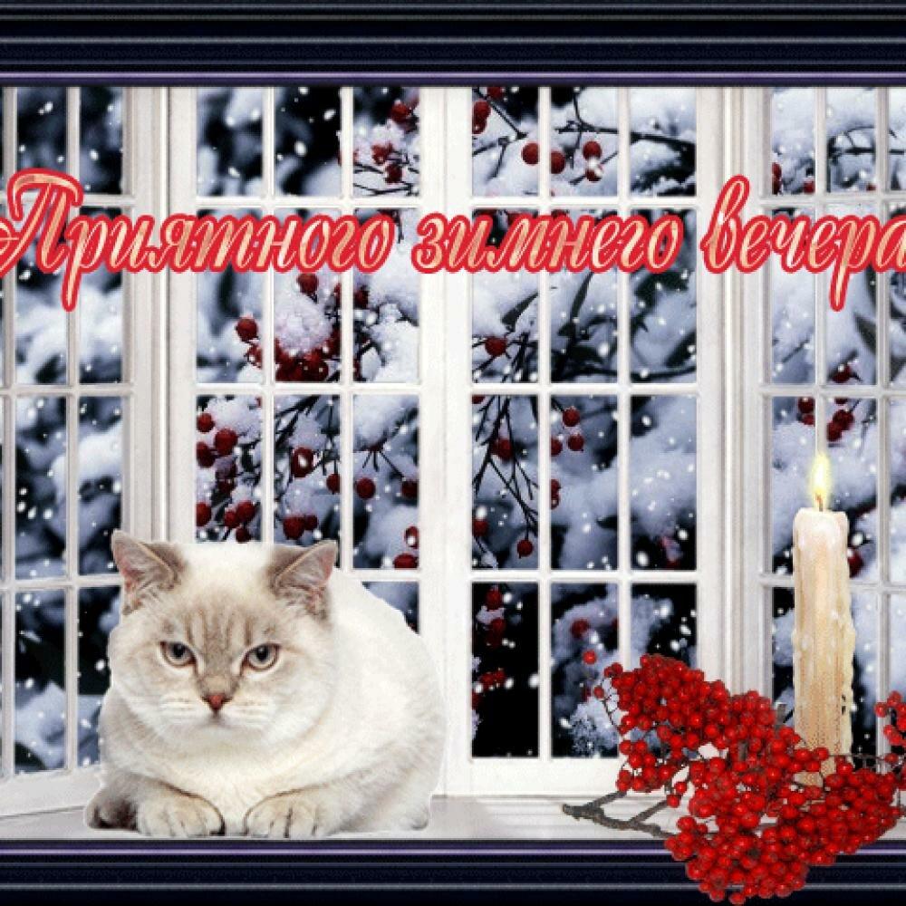 Гиф добрый зимний вечер прекрасного настроения