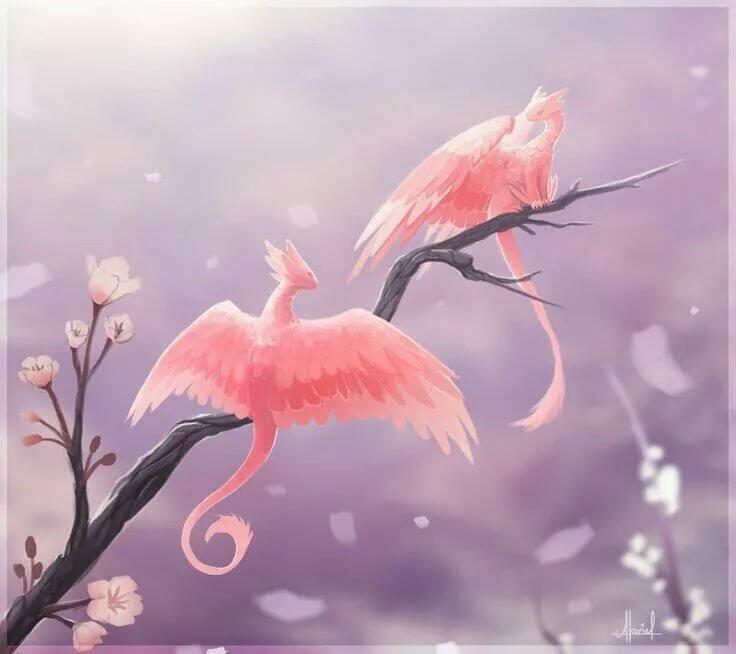 результате драконы и сакура картинки просто обожает