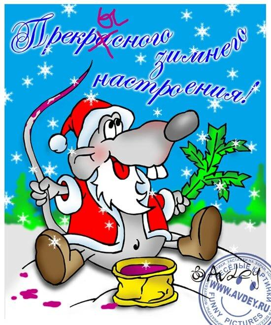 уже пожелания на новый год прикольные картинки крысы любого дикого мяса