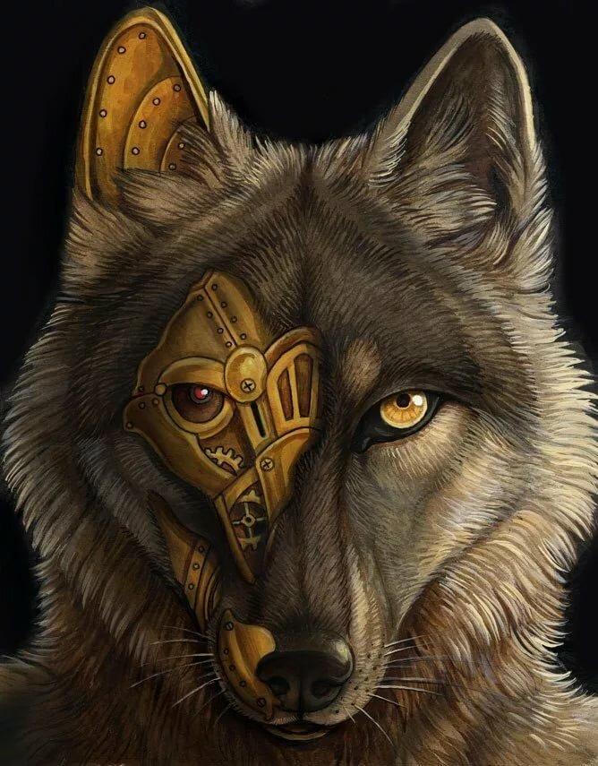 Макензийский равнинный волк фото что пара