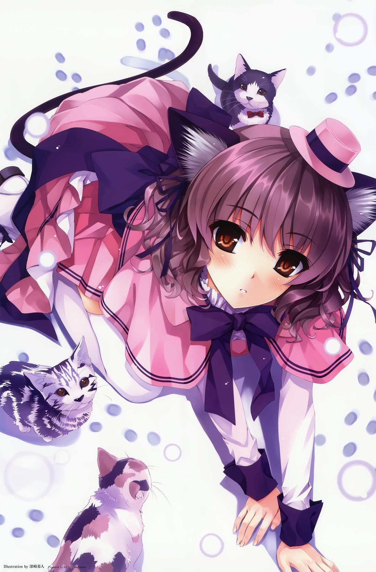 Фото аниме котика девушка