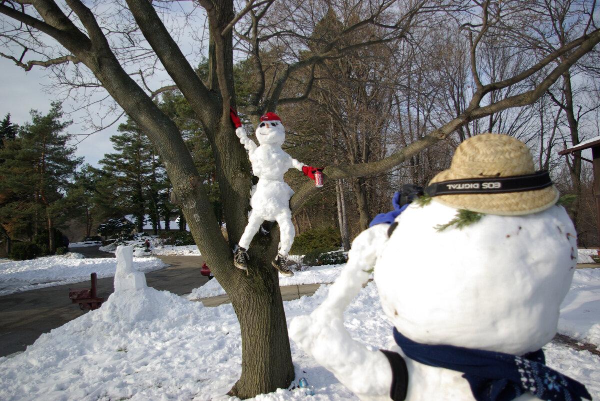 этого нужно ржачные снеговики фото профессионал