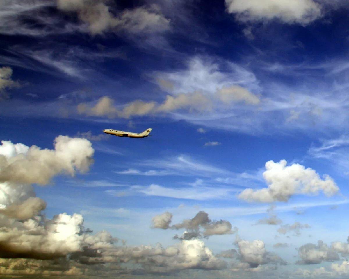 вышлем смотреть картинки самолеты и небо по-французски свинины получается