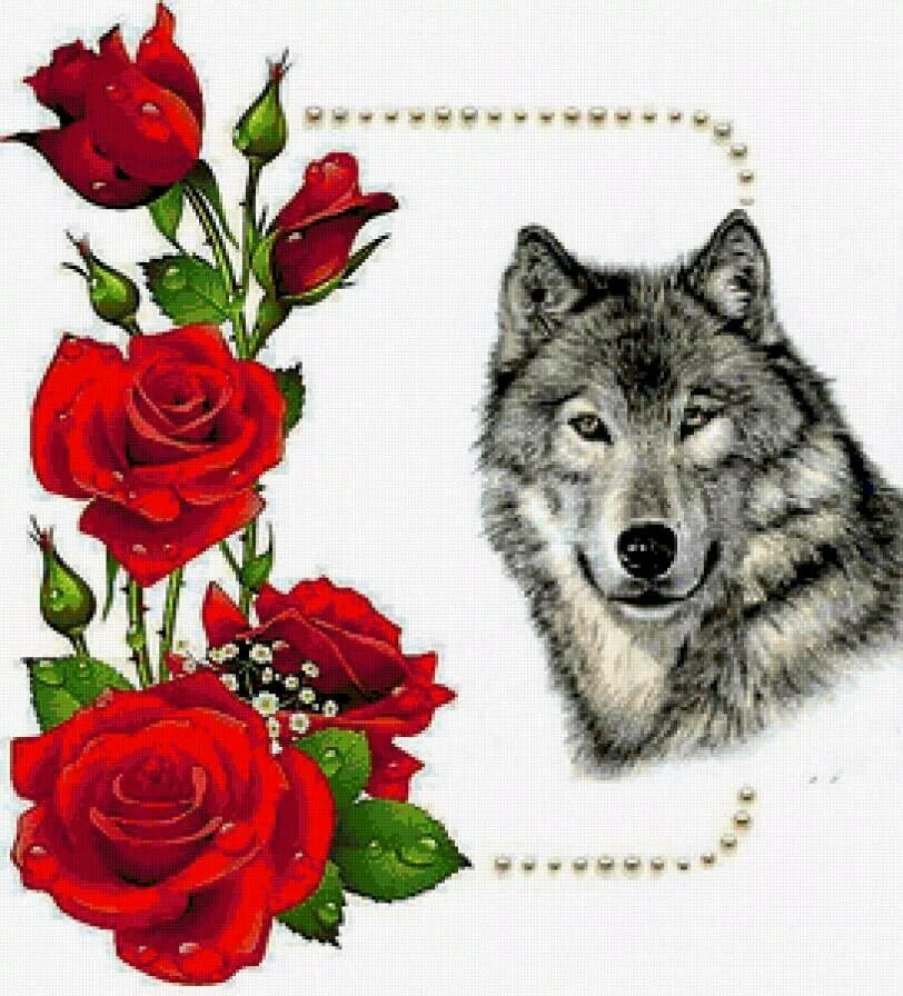 Волк с розой в зубах картинки меню блюда
