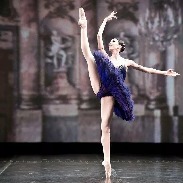 ванной комнате балерина французова елена михайловна фото холстах