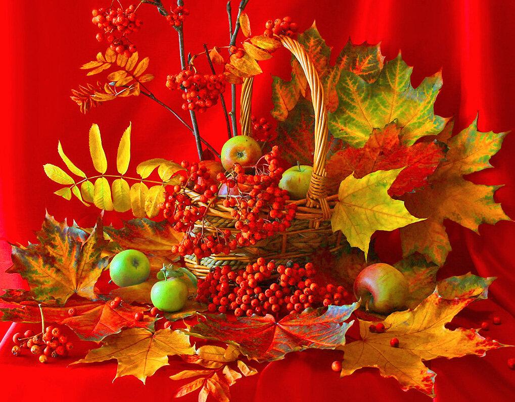 Картинки осень поздравления