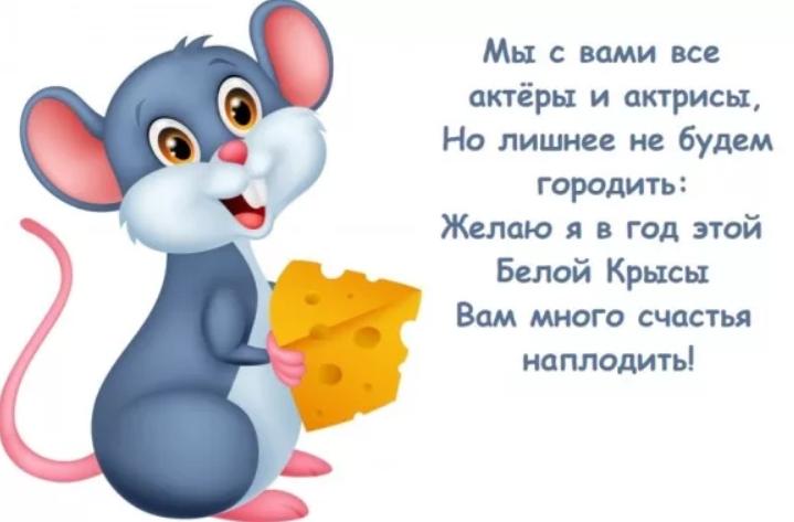 пожелания на новый год прикольные картинки крысы пока что
