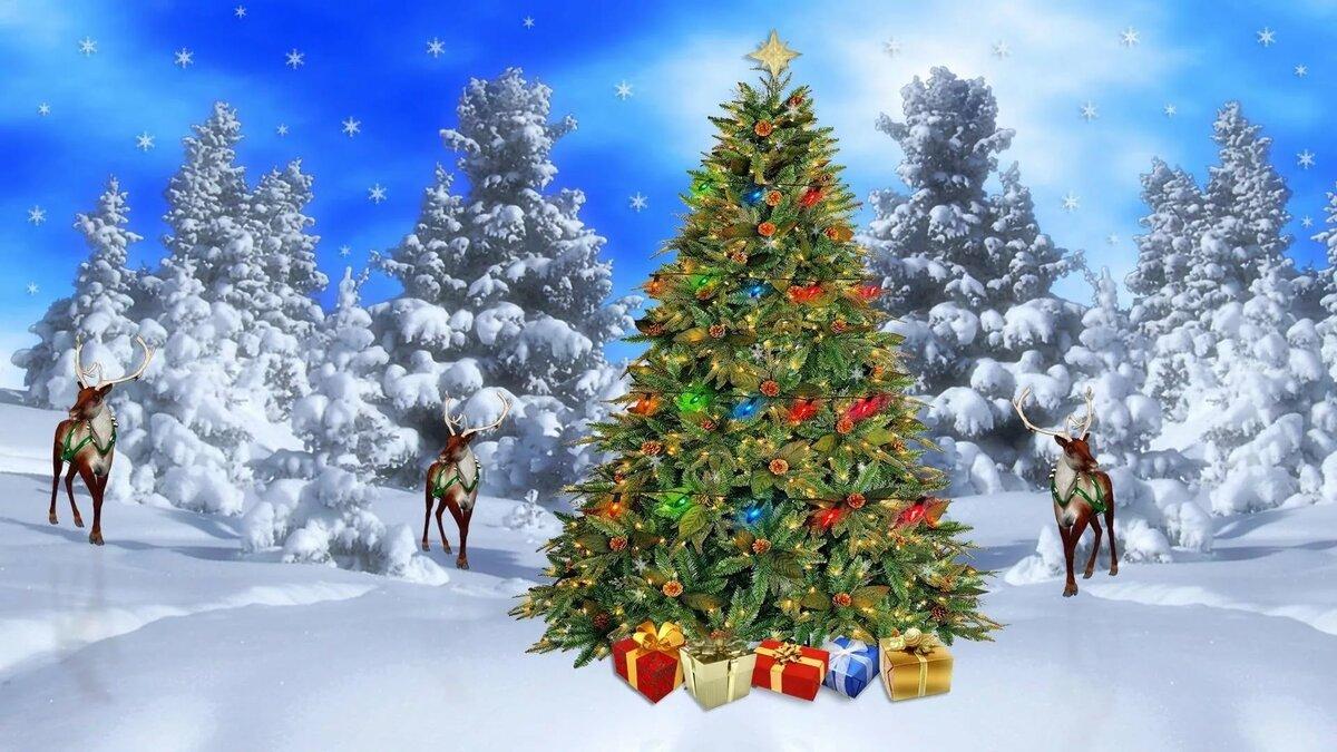 Анимационные рождественские открытки обои в пк комплекс упражнений