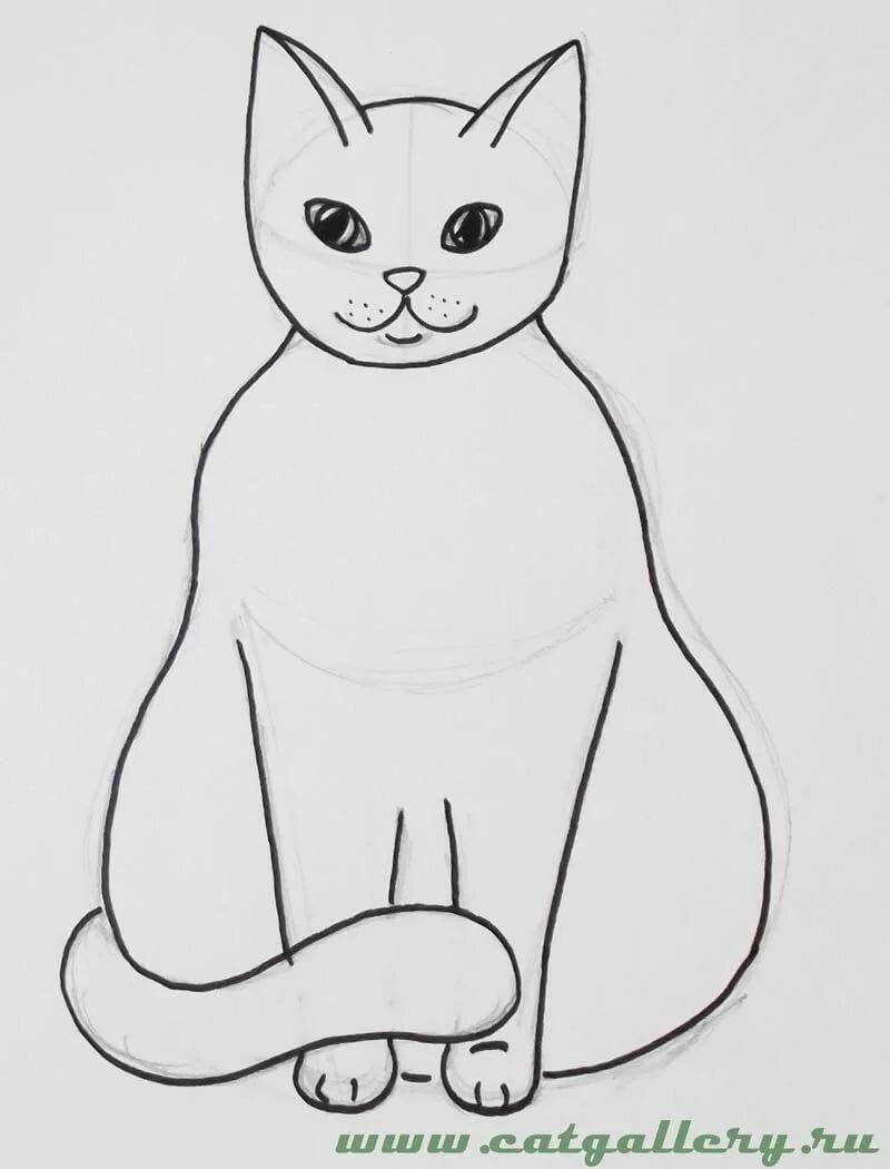 картинки кошки карандашом легко рисовать выбрать костюм жениха