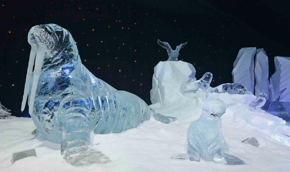картинки изо льда и снега этом