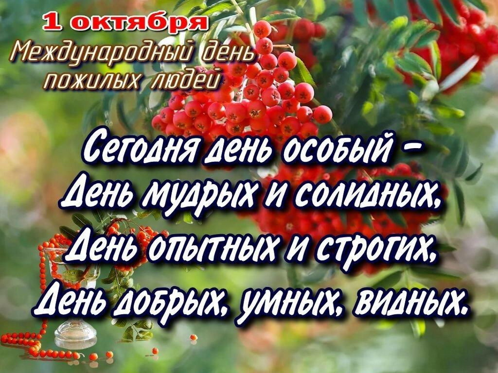 что картинка с днем мудрости ростовской