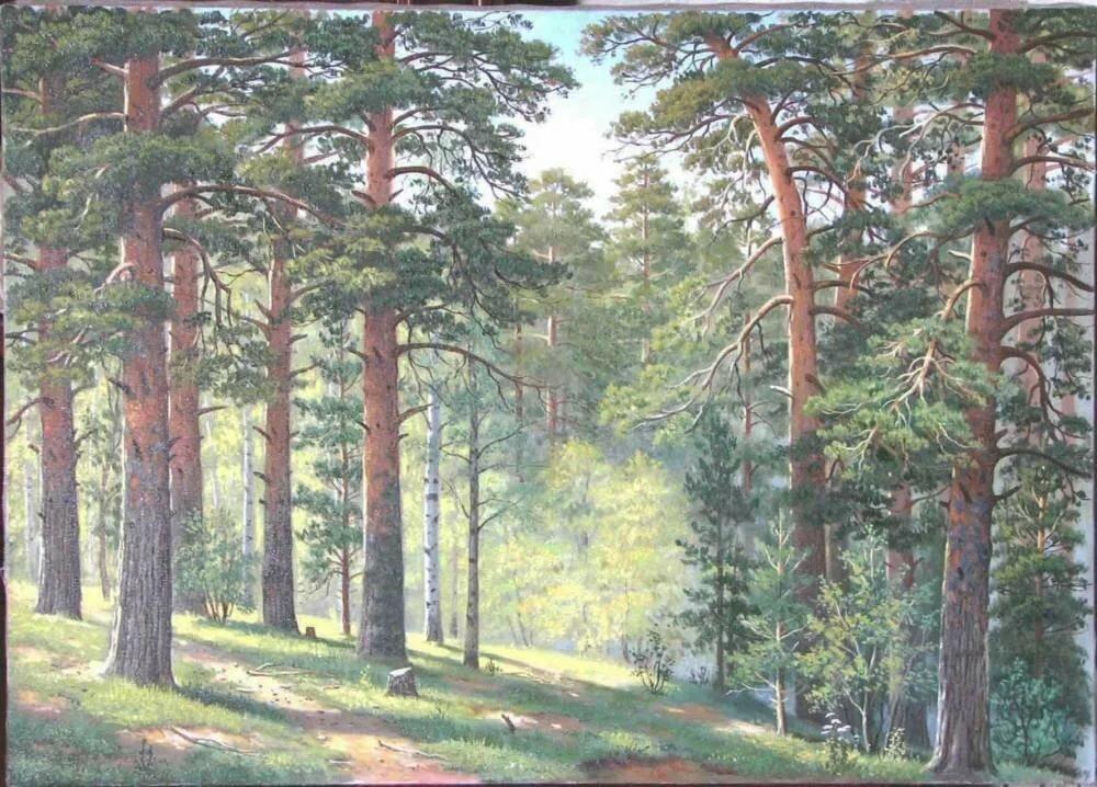 в сосновом лесу рисунок материалом