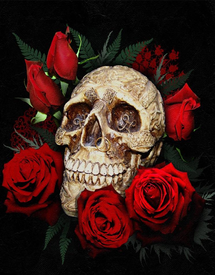 Череп и розы картинки