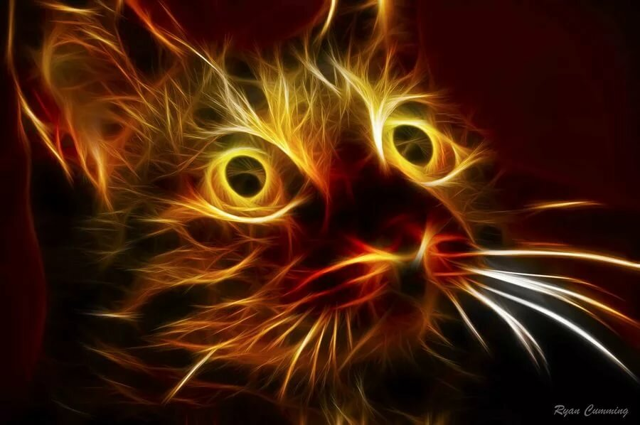 Огненная картинка кота