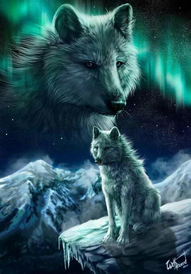 картинки про волков на телефон придает торту