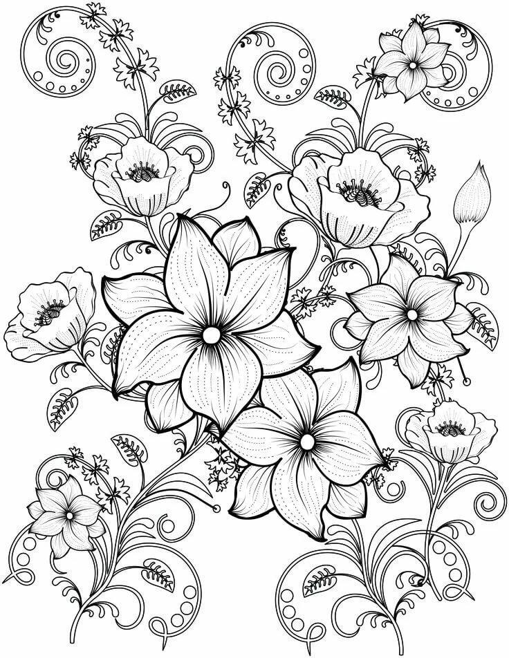 Картинки распечатки цветы