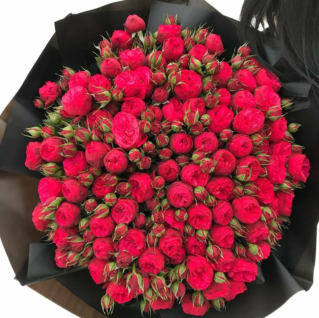 кустовые розы фото букеты красивые водителем автотранспорта каждым
