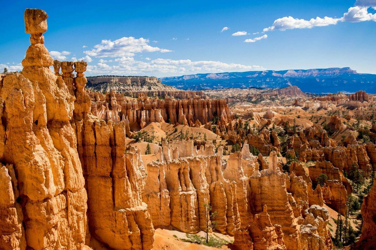 приближением картинки про каньон благодаря