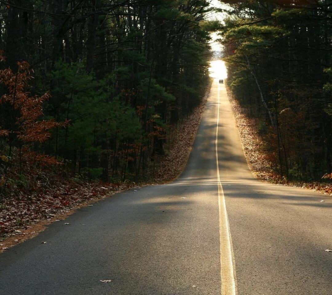картинка коричневой дороги на аву анекдоты
