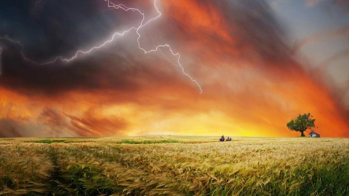 Картинка гроза в поле