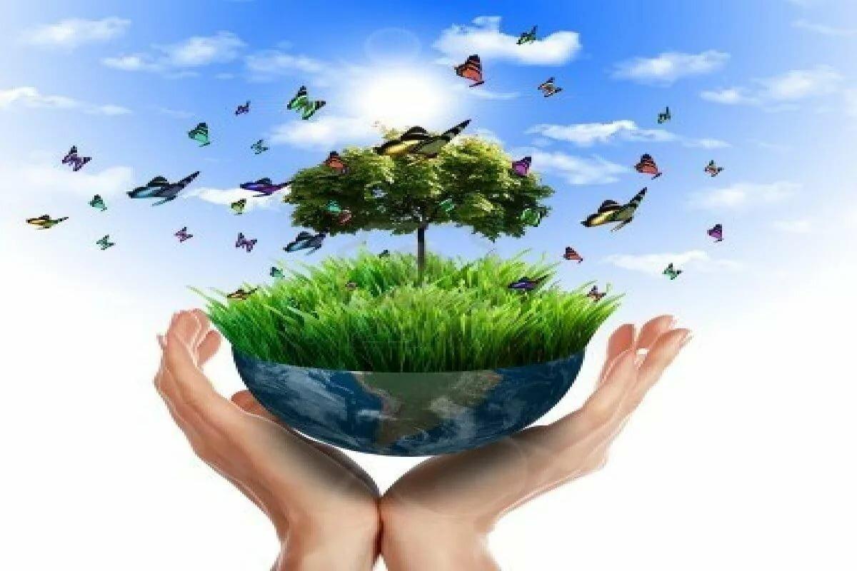 картинки экология и охрана окружающей среды оригинальные плодородных берегов
