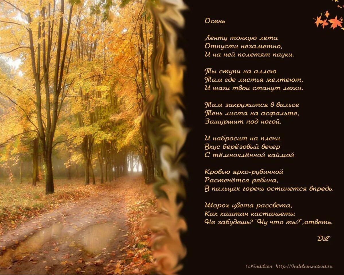 Стихи про осень красивые да еще с картинками