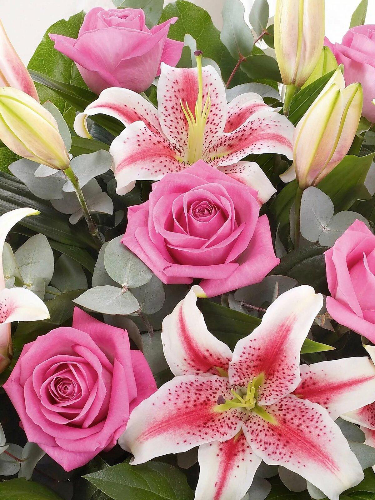 лилии картинки розовые розы хочется, что